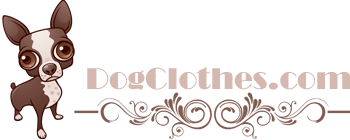 hollywooddogclothes.com